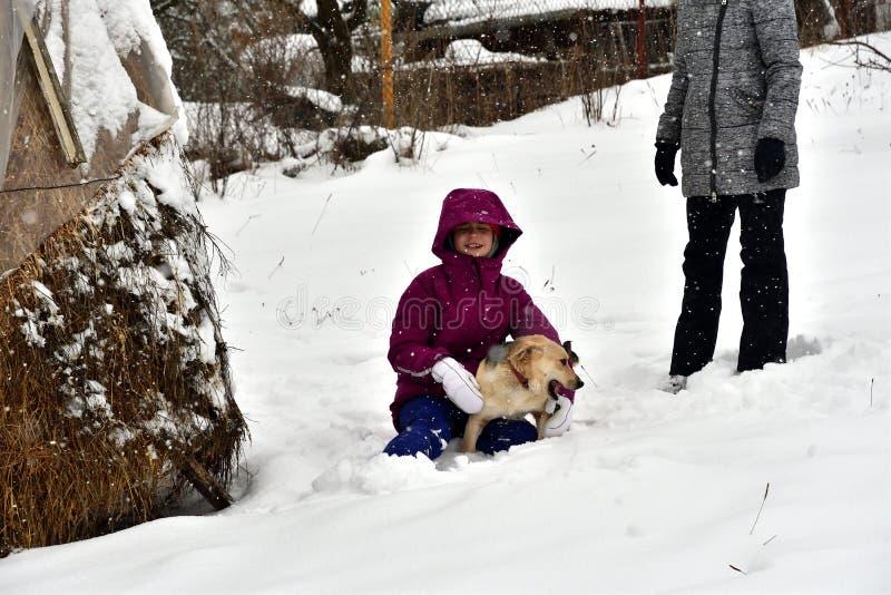 La muchacha está jugando con el perro en la nieve y le da un beso imagen de archivo libre de regalías