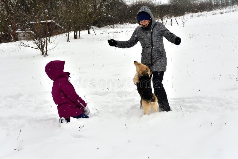 La muchacha está jugando con el perro en la nieve y le da un beso foto de archivo