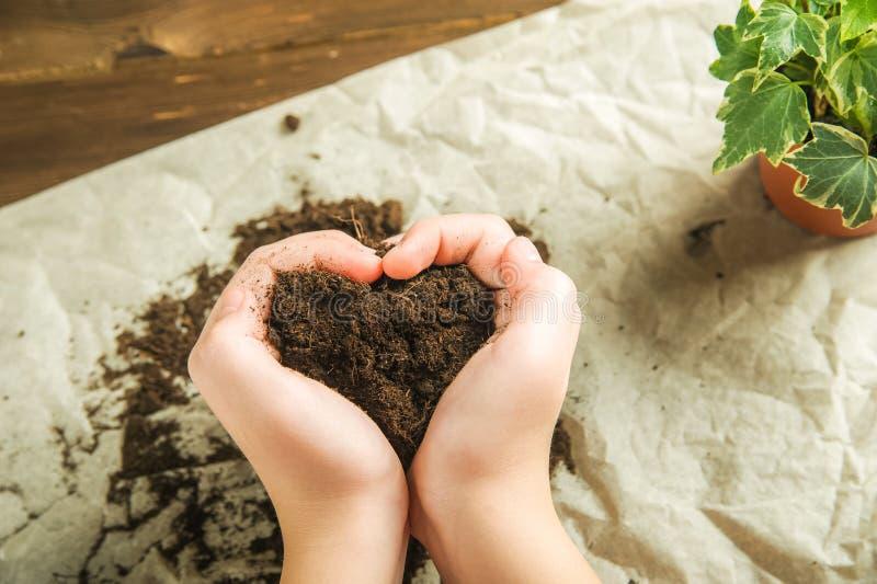 La muchacha está llevando a cabo la tierra La muchacha trasplantará las plantas en conserva en casa Tierra, almácigo, primavera,  fotos de archivo libres de regalías