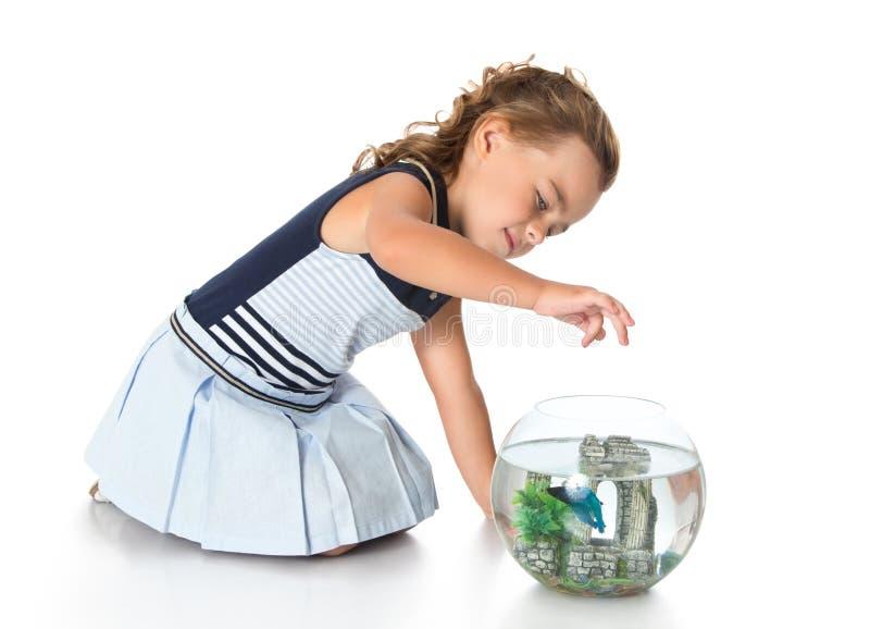 La muchacha está mirando pescados en un acuario imágenes de archivo libres de regalías