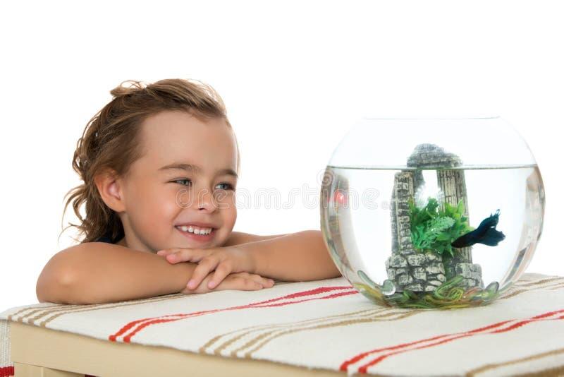 La muchacha está mirando pescados en un acuario fotos de archivo