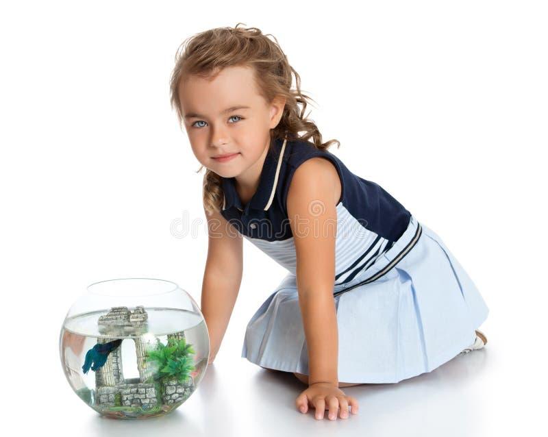La muchacha está mirando pescados en un acuario imagenes de archivo