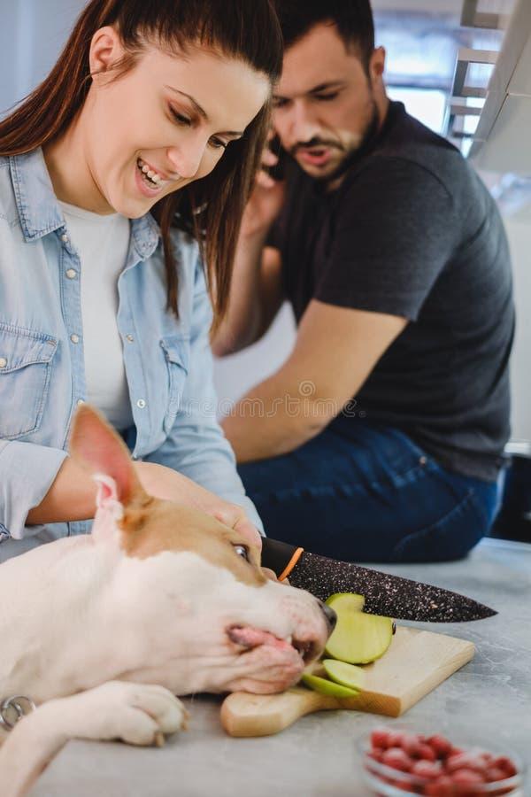 La muchacha está riendo mientras que el perro está robando la manzana imagen de archivo libre de regalías