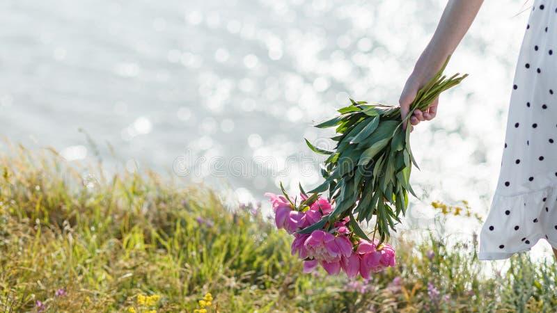 La muchacha está sosteniendo un ramo de peonías rosadas florecientes hermosas Sus alborotos blancos del vestido en el viento foto de archivo