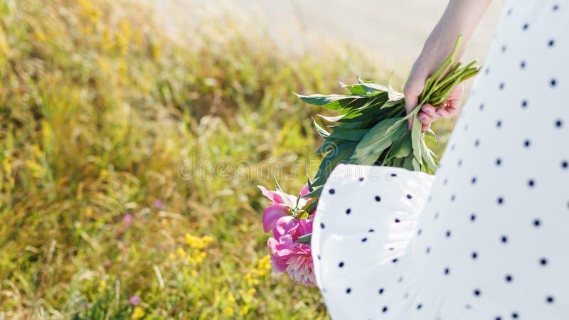 La muchacha está sosteniendo un ramo de peonías rosadas florecientes hermosas Sus alborotos blancos del vestido en el viento imagenes de archivo