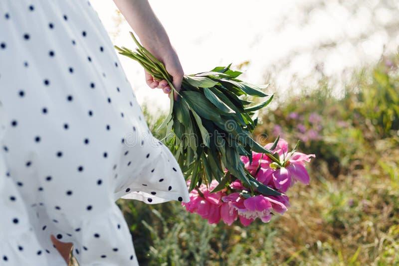 La muchacha está sosteniendo un ramo de peonías rosadas florecientes hermosas Sus alborotos blancos del vestido en el viento Vera imágenes de archivo libres de regalías