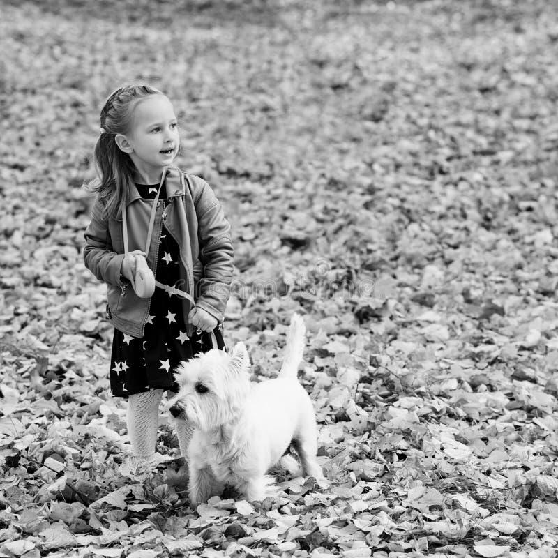 La muchacha feliz del niño corre El niño tiene la diversión y juegos con su perro durante paseo en muchacha elegante del bosque d imagen de archivo libre de regalías
