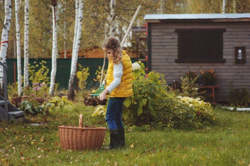 La muchacha feliz del niño que juega al pequeño jardinero en otoño y que escoge se va en cesta Trabajo estacional del jardín foto de archivo