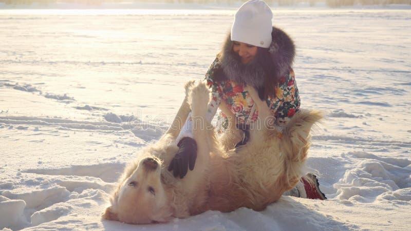 La muchacha feliz hermosa joven juega con un perro del perro perdiguero en la nieve en invierno en día soleado durante tiempo de  imagen de archivo