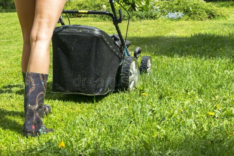La muchacha hermosa corta el césped, céspedes de siega, cortacésped en la hierba verde, equipo de la hierba del cortacéspedes, he imagen de archivo