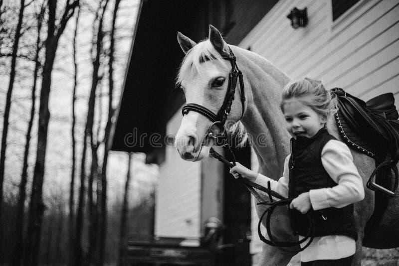 La muchacha hermosa sienta el caballo del beiside en el puente Bosque en fondo Rebecca 36 foto de archivo libre de regalías