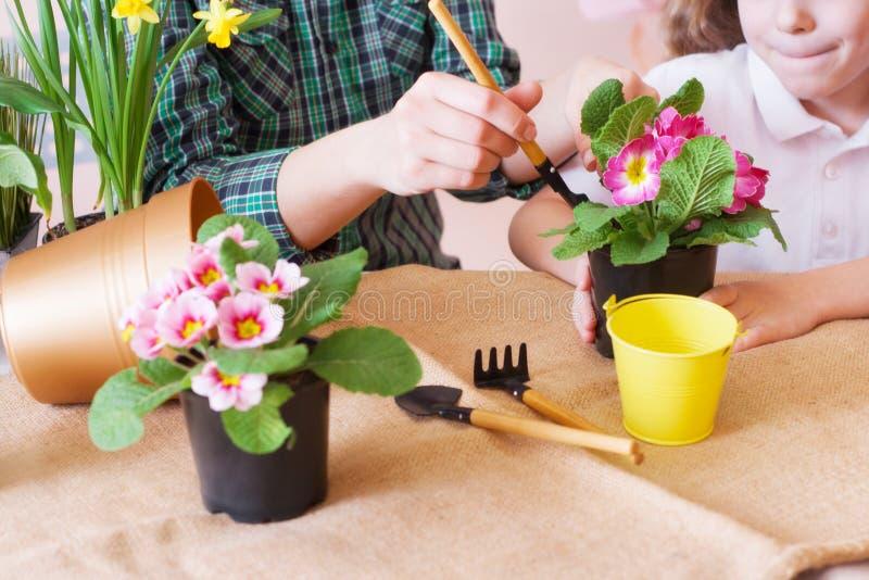 La muchacha linda del ni?o ayuda a su madre a cuidar para las plantas Cierre para arriba imágenes de archivo libres de regalías