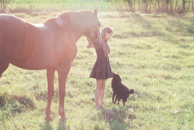 La muchacha lleva su caballo y frotar ligeramente el perro negro imágenes de archivo libres de regalías