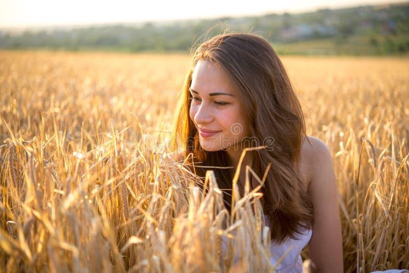La muchacha mira el campo de trigo la puesta del sol fotografía de archivo