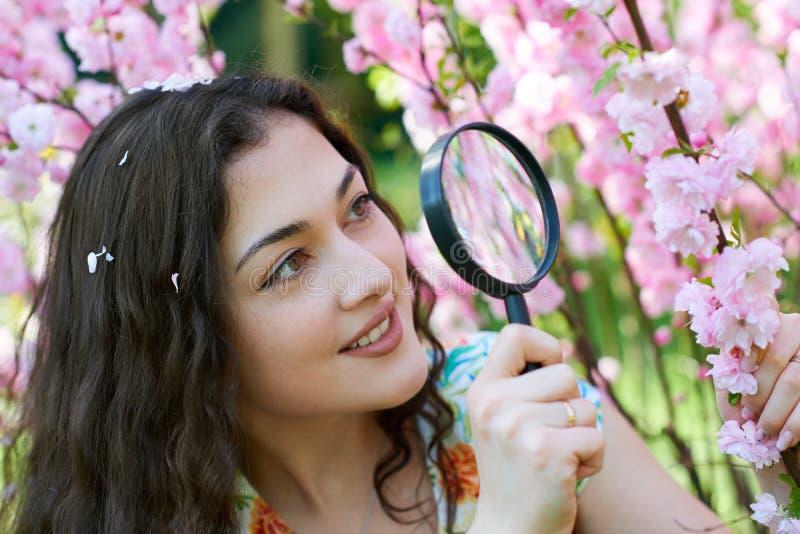 La muchacha mira a través de la lupa las flores rosadas, estudiando las plantas - concepto del entrenamiento y de la botánica fotos de archivo