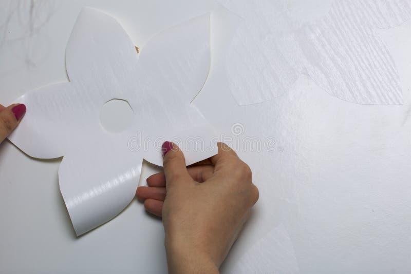 La muchacha pega los elementos cortados del papel auto-adhesivo, para enmascarar los defectos de la puerta blanca fotos de archivo