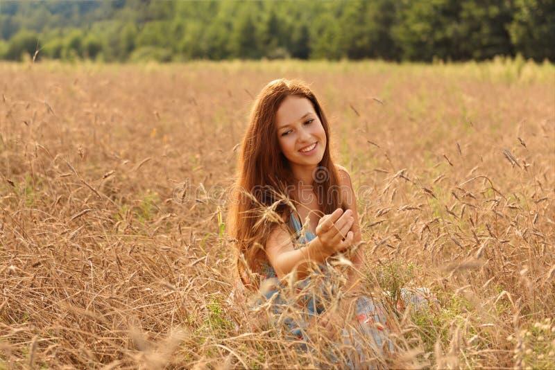 La muchacha pelirroja sonriente de los jóvenes en un campo de trigo alegre examina las espiguillas de la peladura imágenes de archivo libres de regalías