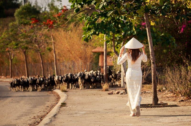 la muchacha rubia en vestido del vietnamita va a la multitud de las cabras foto de archivo