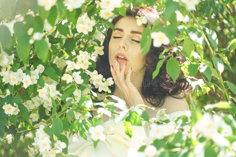La muchacha se coloca entre los arbustos del jazmín e inhala la fragancia de flores imagenes de archivo