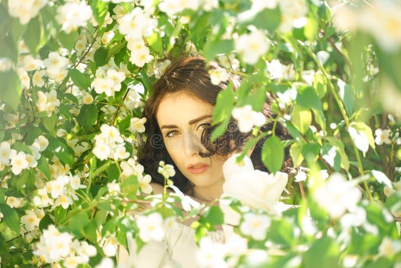 La muchacha se coloca entre los arbustos del jazmín e inhala la fragancia de flores foto de archivo libre de regalías