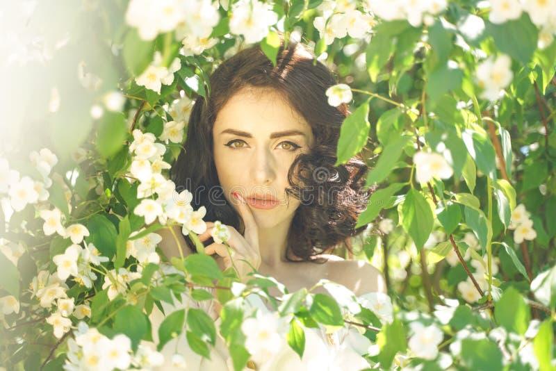 La muchacha se coloca entre los arbustos del jazmín e inhala la fragancia de flores imagen de archivo