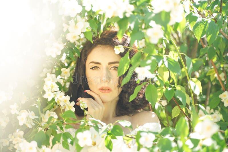 La muchacha se coloca entre los arbustos del jazmín e inhala la fragancia de flores fotos de archivo