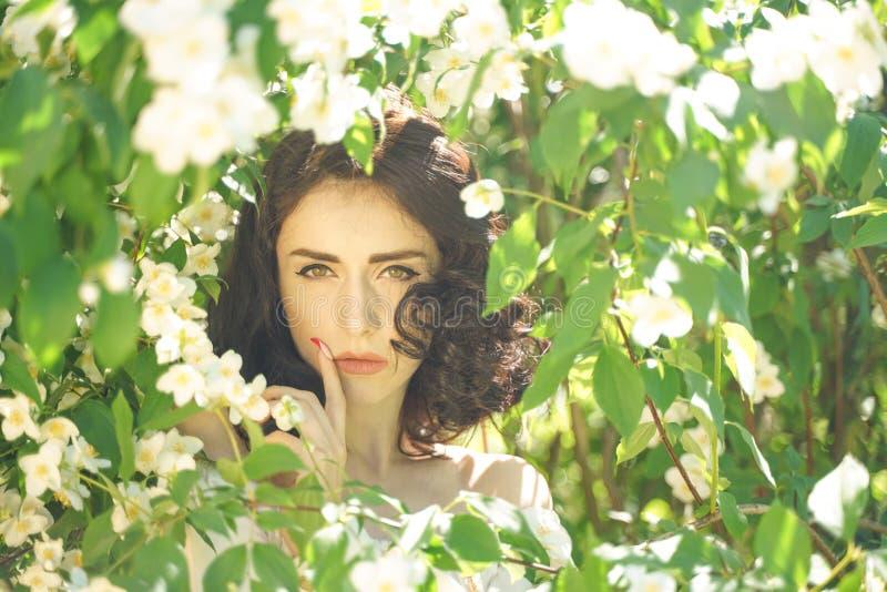 La muchacha se coloca entre los arbustos del jazmín e inhala la fragancia de flores fotos de archivo libres de regalías