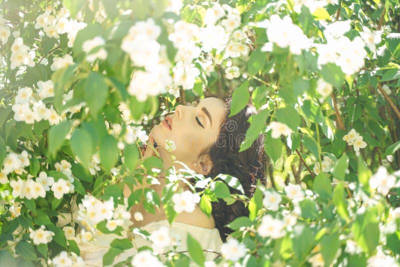 La muchacha se coloca entre los arbustos del jazmín e inhala la fragancia de flores imagen de archivo libre de regalías