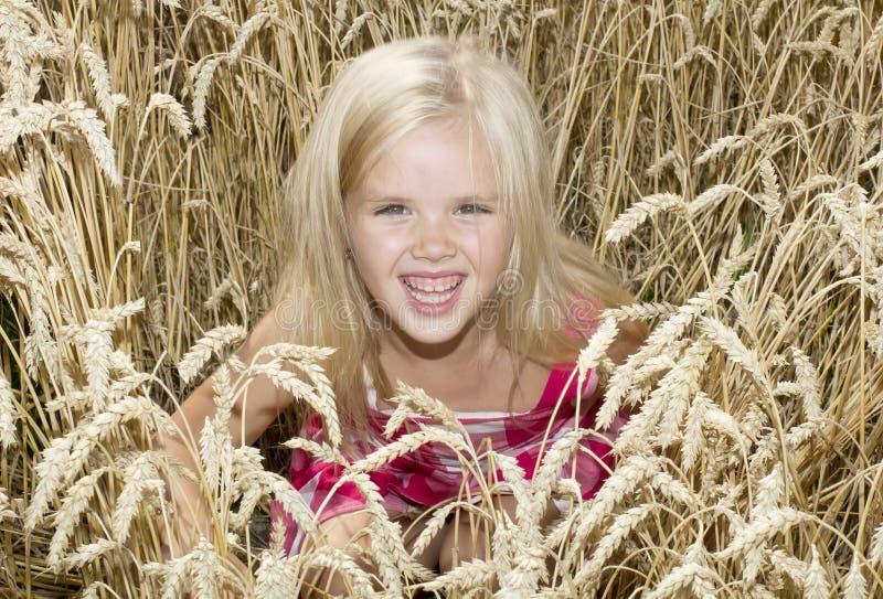 La muchacha se está colocando en un campo de trigo fotografía de archivo libre de regalías