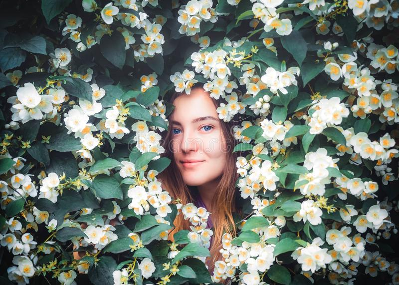 La muchacha smilling joven feliz que se divierte coge los pétalos con sus manos en fondo del arbusto floreciente con las flores b fotografía de archivo
