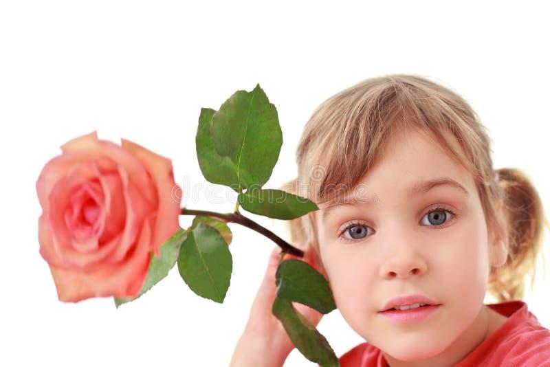 La muchacha sostiene la rosa grande cerca de un oído, foco en cara fotografía de archivo libre de regalías