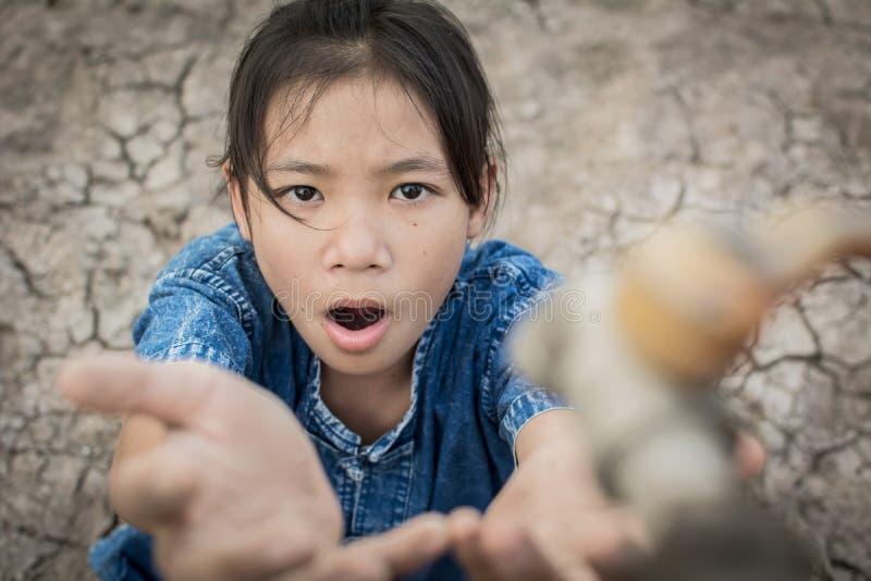 La muchacha triste quiere beber un poco de agua en la tierra de la grieta foto de archivo libre de regalías