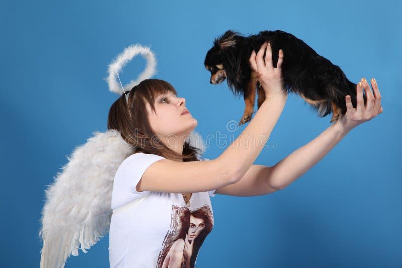 La muchacha un ángel y un perrito imágenes de archivo libres de regalías