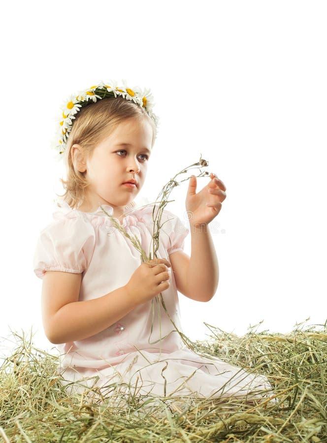 La muchacha ve la cuchilla de la hierba imagen de archivo libre de regalías