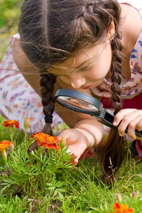 La muchacha ve las flores a través de la lupa imagenes de archivo