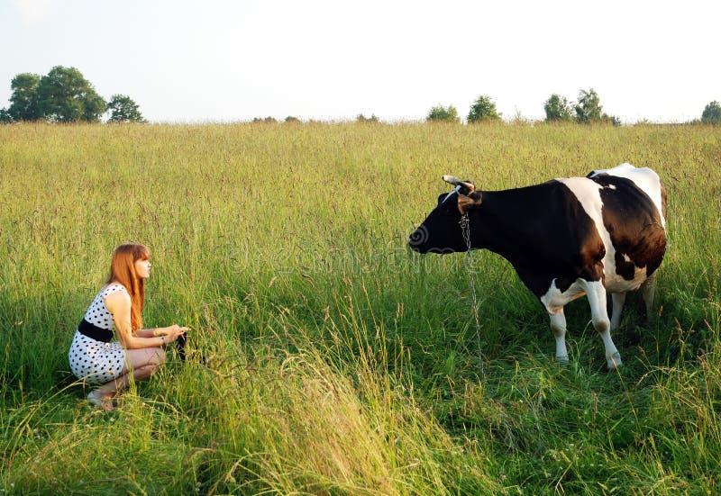 La muchacha y la vaca fotografía de archivo