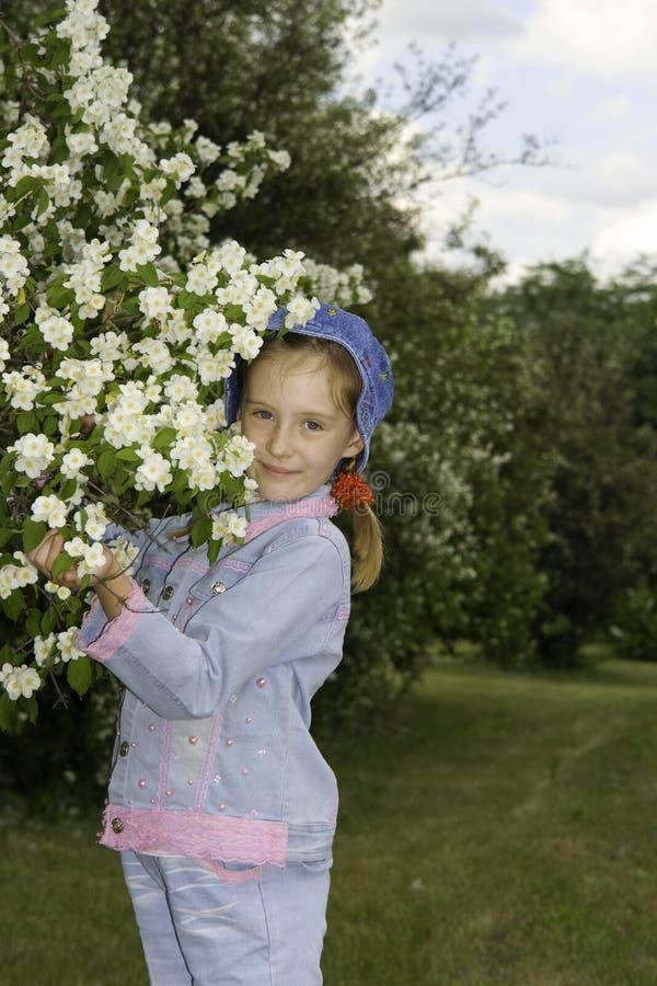La muchacha y un arbusto del jazmín imágenes de archivo libres de regalías