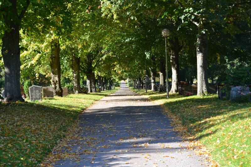 La muerte del otoño imagen de archivo