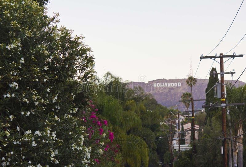 La muestra de Hollywood, icono situado en Los Ángeles imagen de archivo