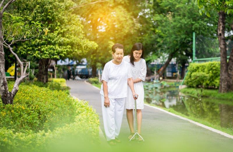 La mujer asiática mayor de la tentativa que camina para hacer entrenamiento con el palillo en el parque público, hija toma cuidad fotos de archivo libres de regalías