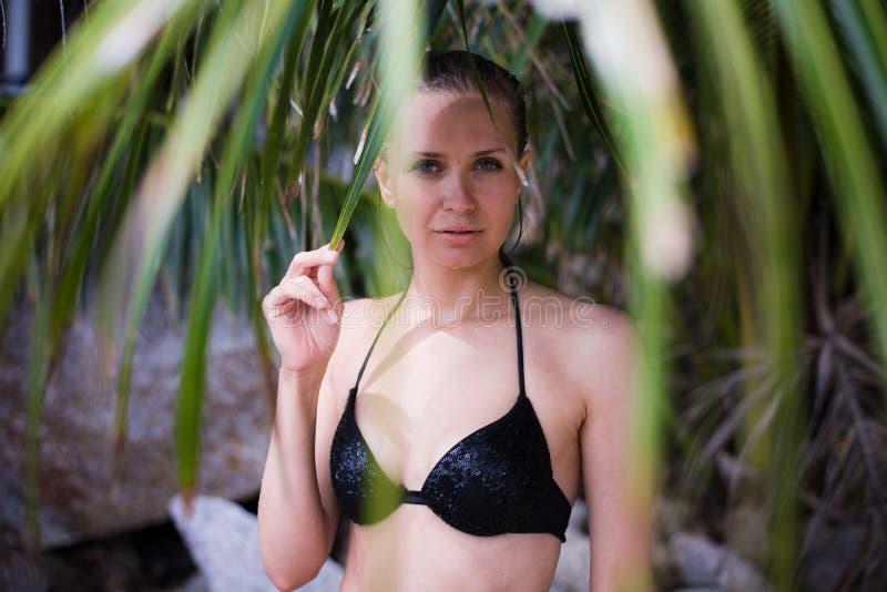 La mujer atractiva joven con el cuerpo ideal en traje de baño negro está presentando en hojas de palma en selva imagen de archivo libre de regalías