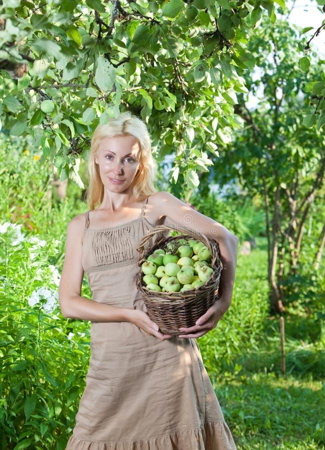 La mujer atractiva joven con una cesta de manzanas en un jardín. foto de archivo