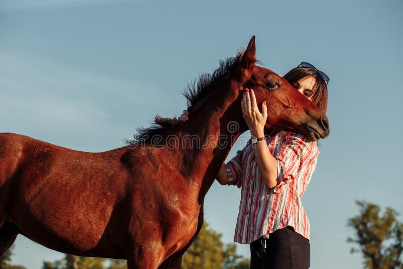 La mujer bonita joven abraza un potro en un campo Adultos jovenes fotos de archivo
