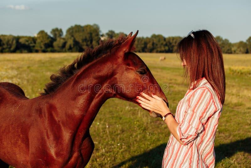 La mujer bonita joven abraza un potro en un campo Adultos jovenes imagen de archivo