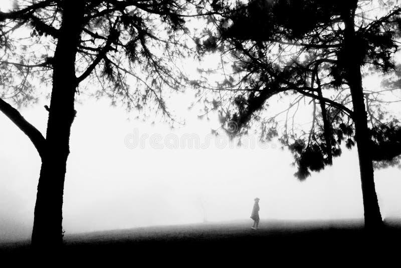 La mujer caminaba en un bosque brumoso libre illustration