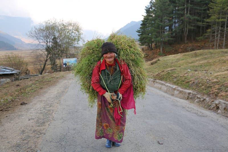 La mujer campesina lleva la carga pesada del grano, Bhután fotos de archivo