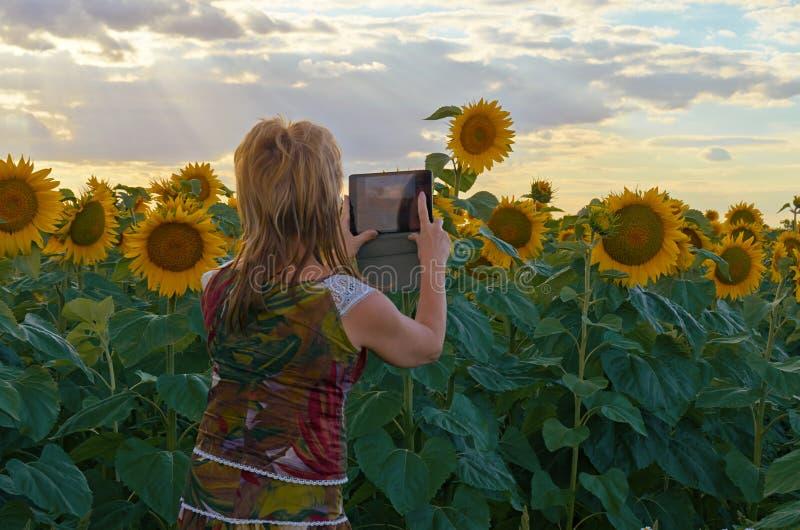 La mujer con la tableta imágenes de archivo libres de regalías