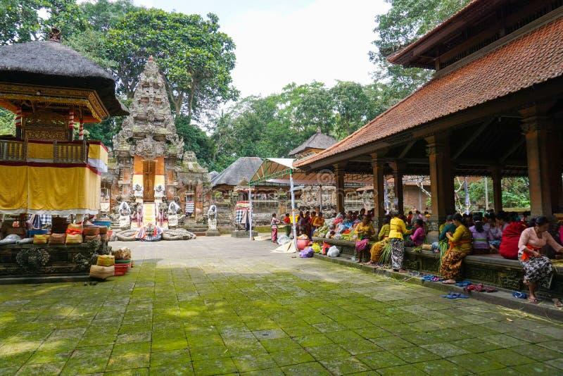 La mujer del Balinese que se prepara para hacer el ofrecimiento hindú diario es una tradición, bosque del mono, Bali, Indonesia,  fotografía de archivo