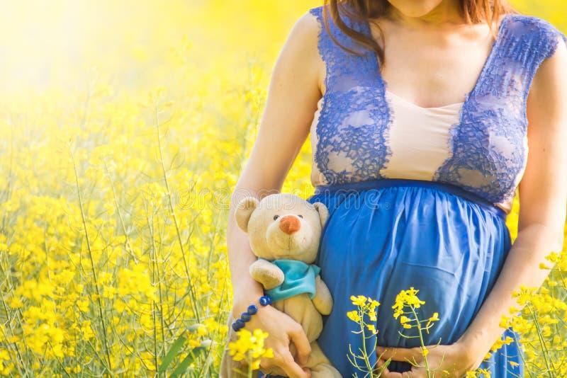 La mujer embarazada y el peluche juegan en campo del canola foto de archivo