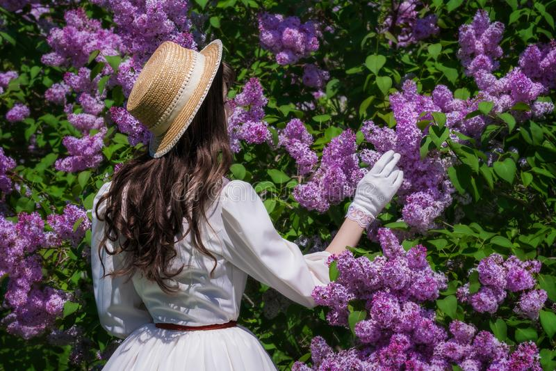 La mujer en un vestido blanco disfruta de floración de la lila fotos de archivo libres de regalías